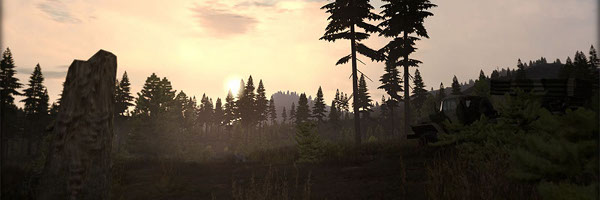 caribou_dawn_pre_s